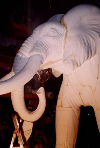 elefante2.