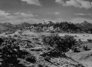 Benameji.Schild7