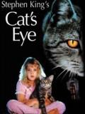 Cat´s eye